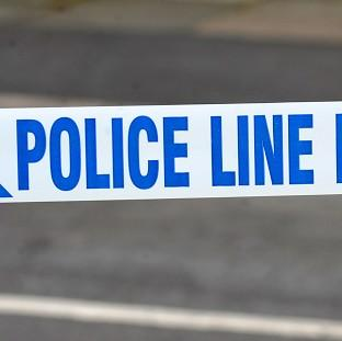 Police have arrested a school pupil after a boy who collapsed during an altercation died in hospital