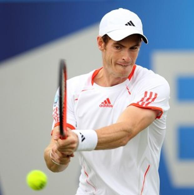 Andy Murray (pictured) suffered a three-set defeat to Janko Tipsarevic