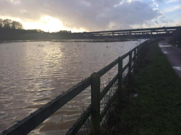 Thurrock Gazette: The valley flooded consistently throughout December and January, leaving campaigners worried for horses that graze there
