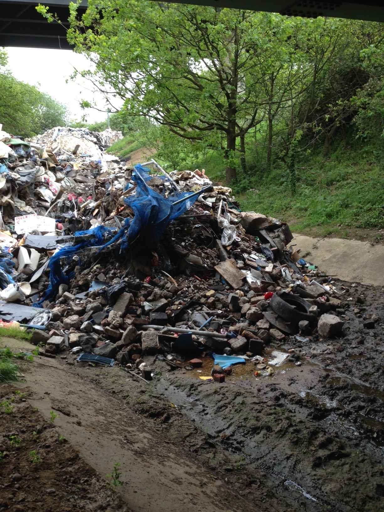 The mounds of waste which have been dumped on a pathway under the M25 leading to Davy Down