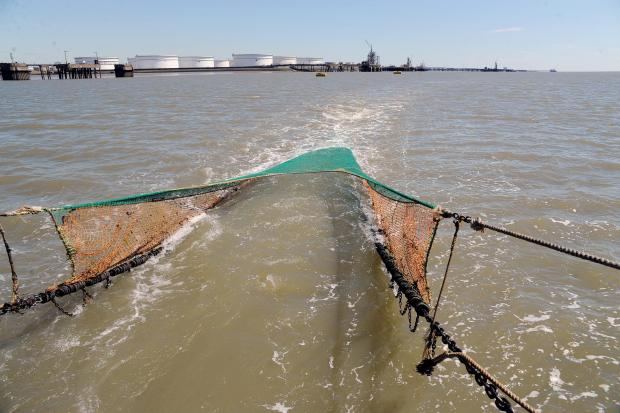 Thurrock Gazette: Trawling by the port