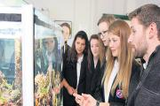 Captivated – flashback to last year's University of Essex's Big Bang Science fair with pupils learning about coral reef research