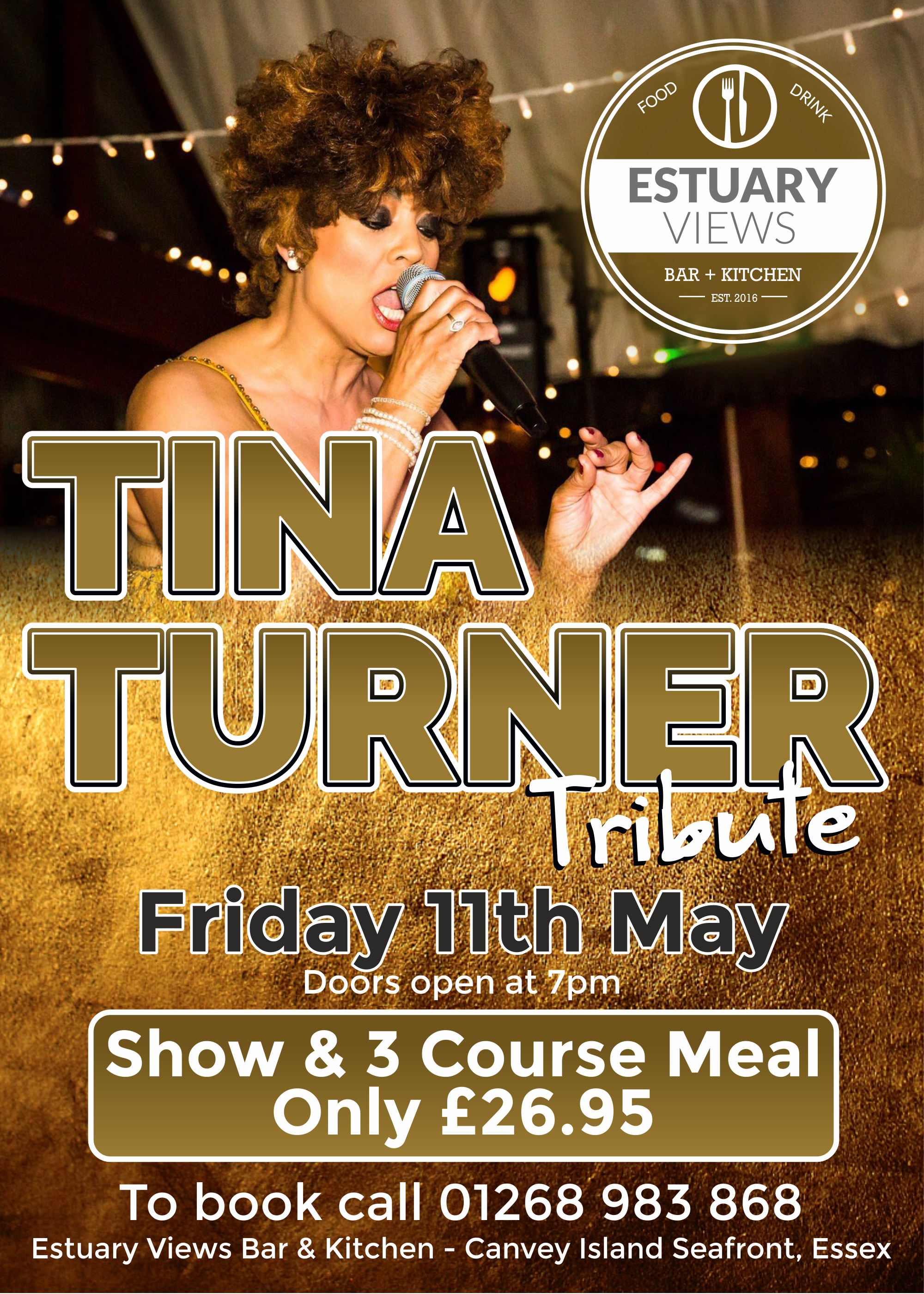 Whats Love Got To Do With It, Tina Turner Tribute Night