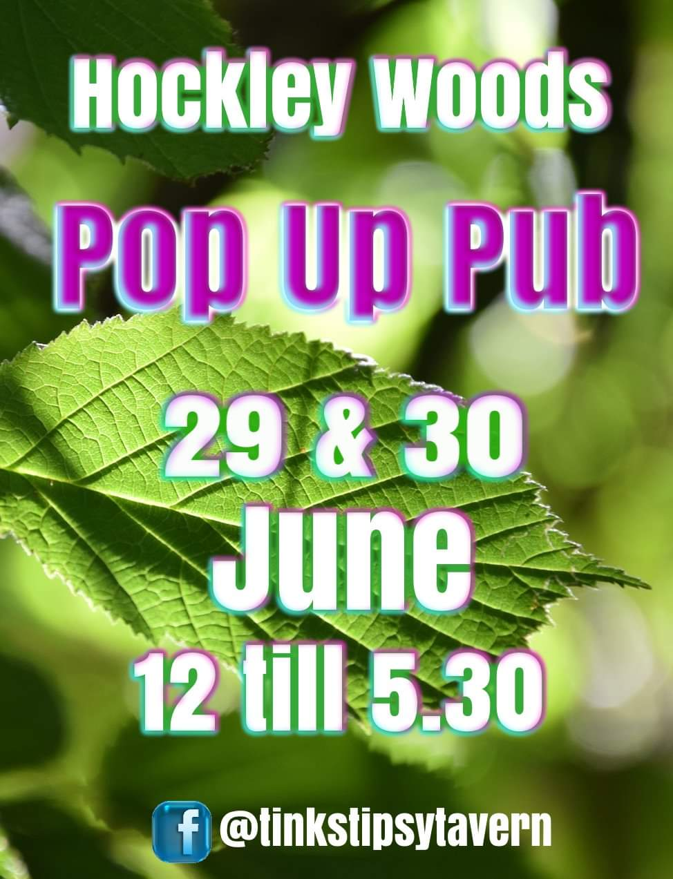 Hockley Woods Pop Up Pub